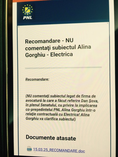 gorghiu.electrica